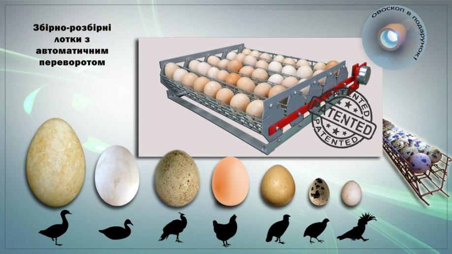 Знімні лотки автоматичного перевороту яєць з касетами