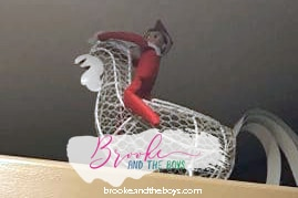 Elf on the Rooster