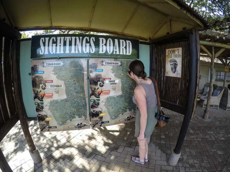 Checking to see where big cats were recently sighted