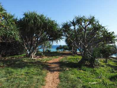 Walking out to Fingal Head