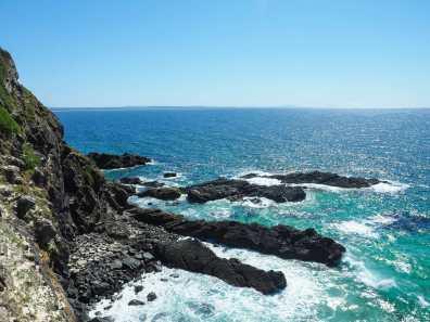Forster coastline