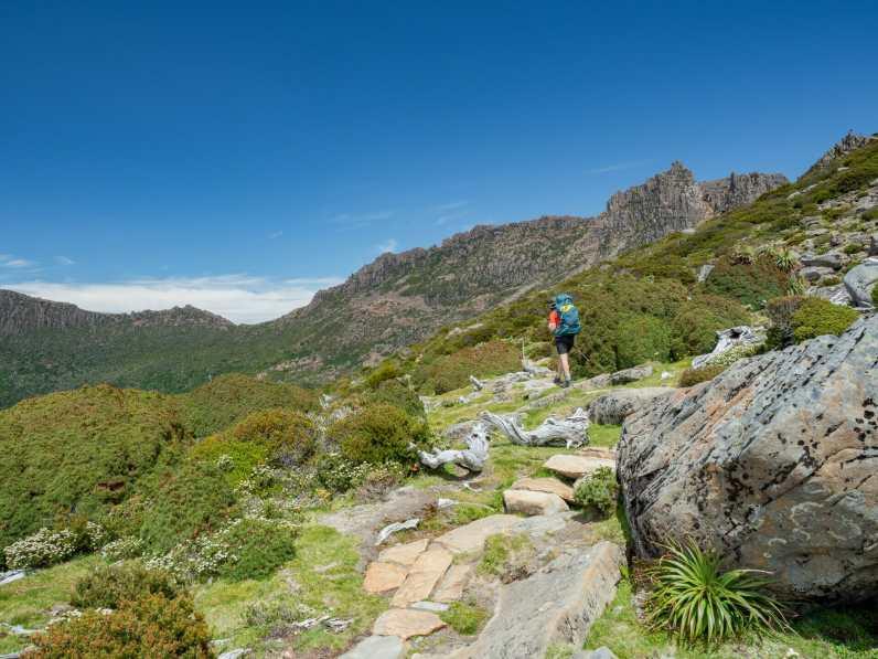 Cal climbing towards Mt Ossa