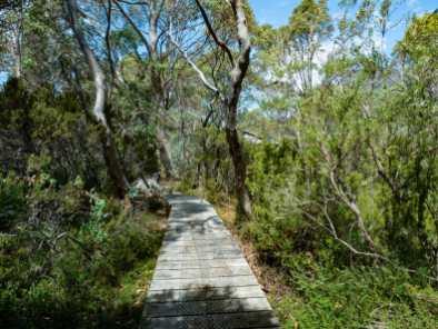 Approaching Kia Ora Hut