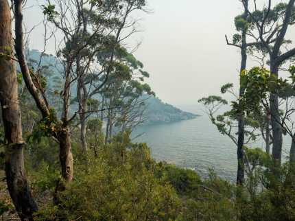 Smoky scenery on day 1 of the Three Capes Track