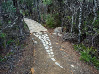 2.5km long snake artwork designed by the local indigenous community