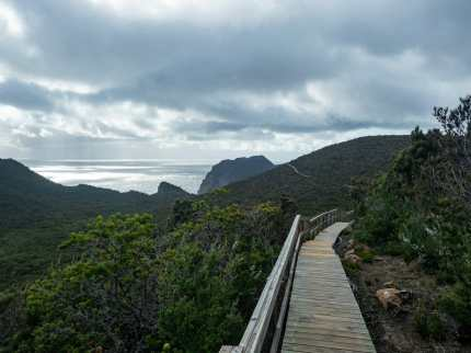Gloomy weather as we walk out to Cape Pillar