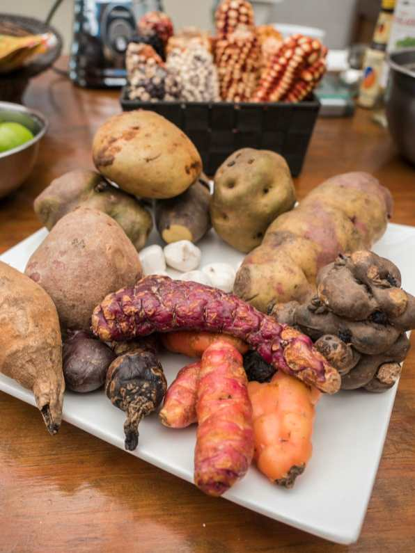 There are more than 4,000 varieties of potato in Peru!