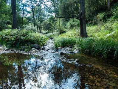 Crossing beautiful creeks in the morning