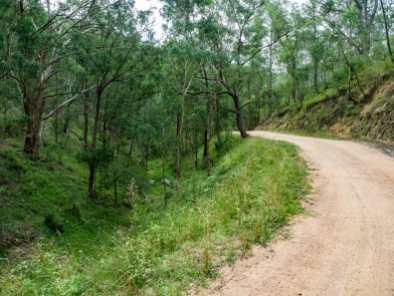 Walking along a steep vehicle track