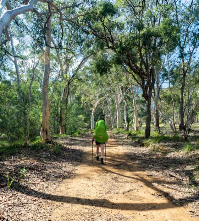 Sunny walk after Megalong Valley Cemetery