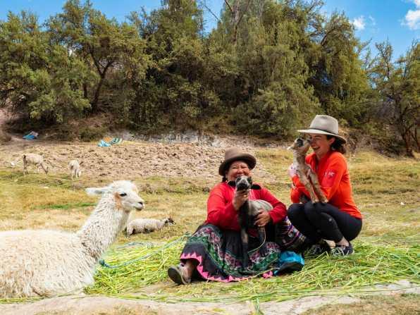 Cuddling adorable baby goats and llamas at Tambomachay