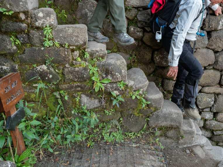 Steep stone steps up Huayna Picchu
