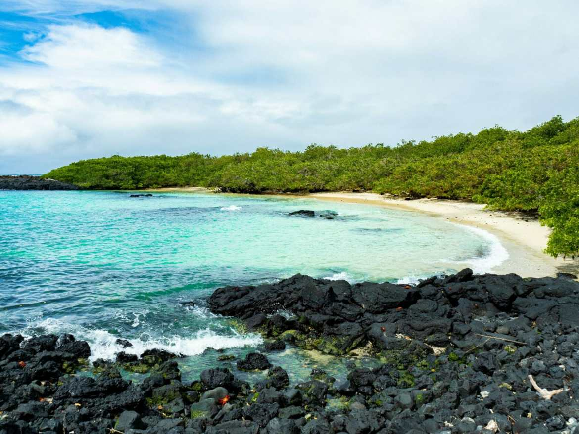 Beach with blue water and black volcanic rock in Galápagos