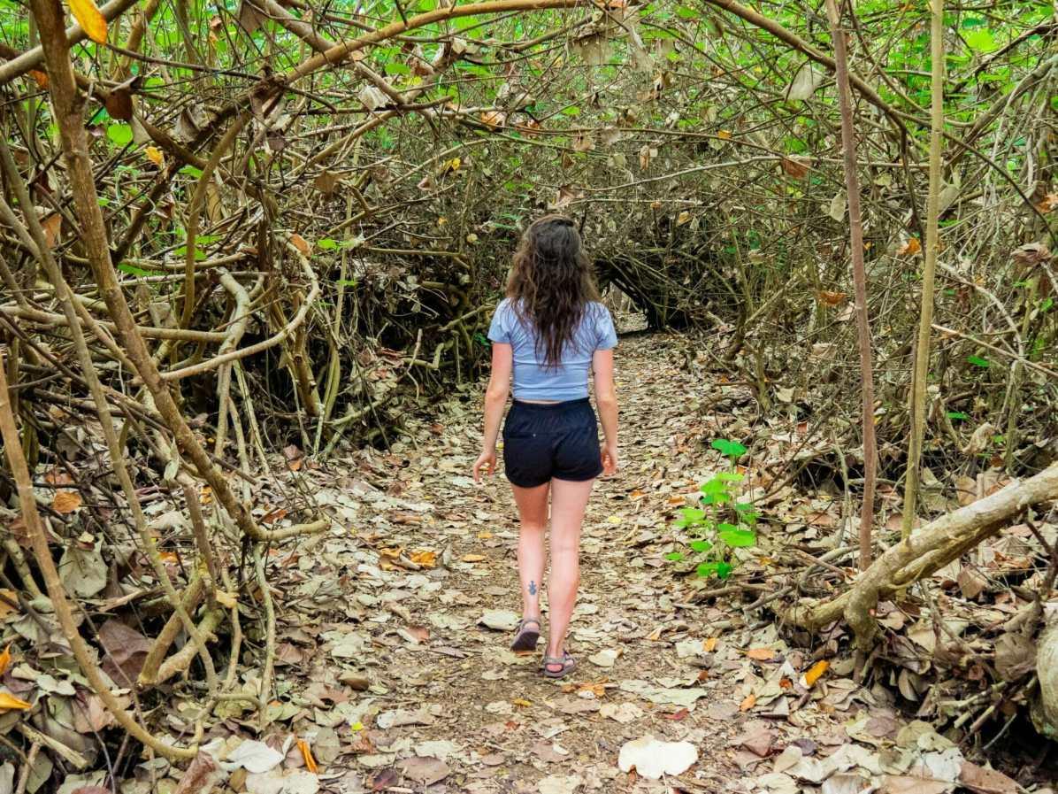 Girl walking through mangroves Galápagos