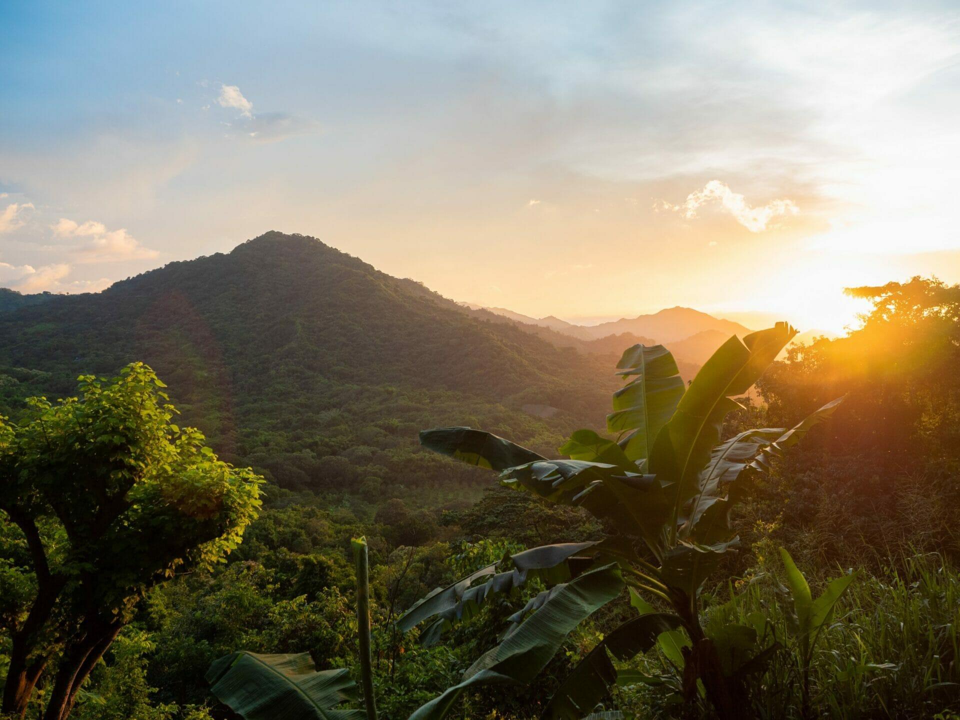 sunset jungle Casa Loma Minca Colombia