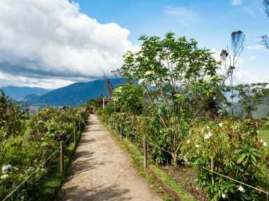 Gardens at Casa del Arbol in Baños Ecuador