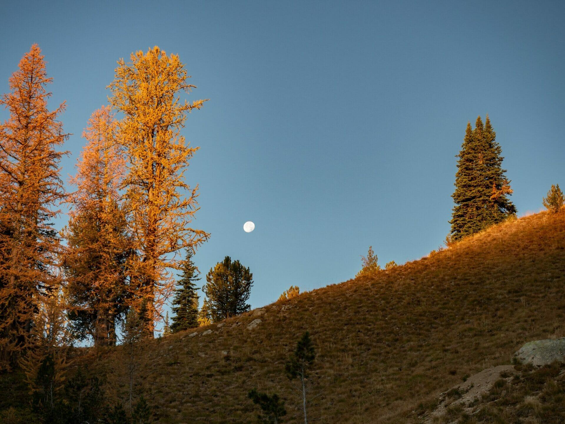 Lake Chelan Summit Trail sawtooth traverse hike Stehekin