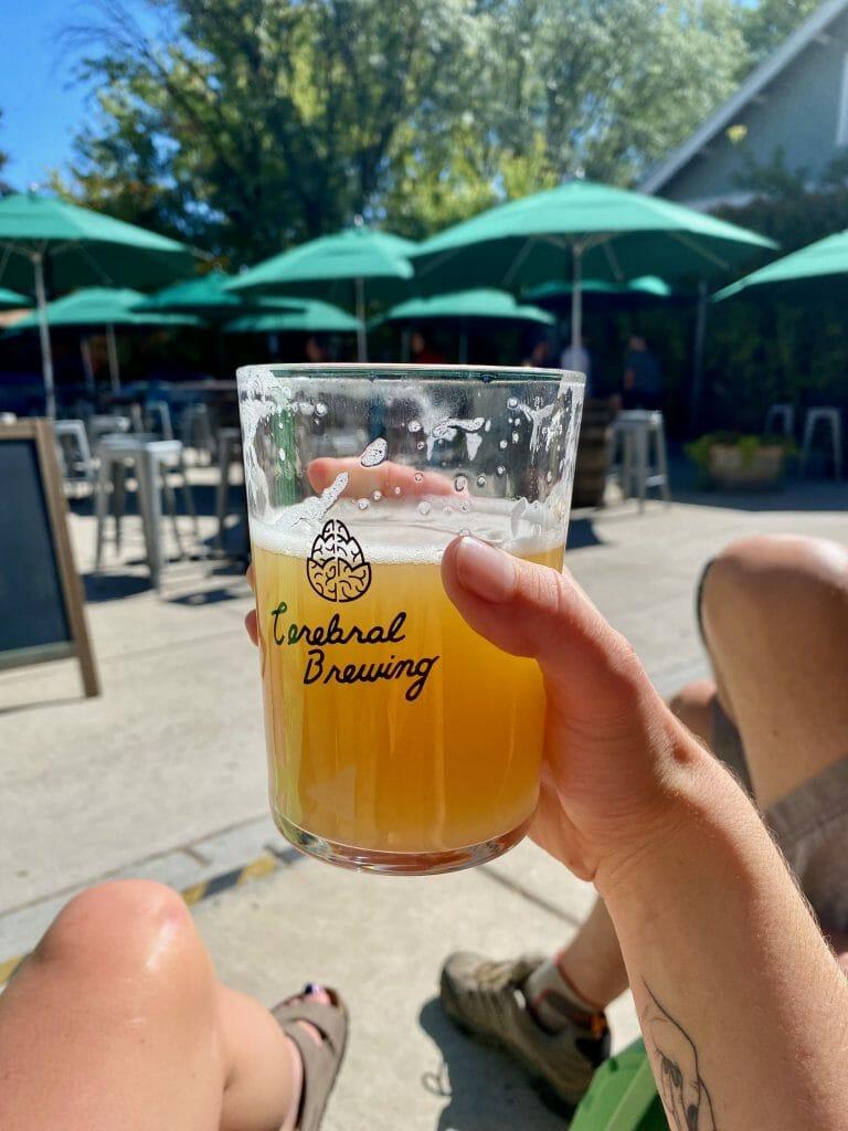 Denver Colorado Cerebral Brewing best beer