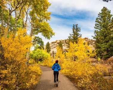 Veedauwoo climbing autumn larch
