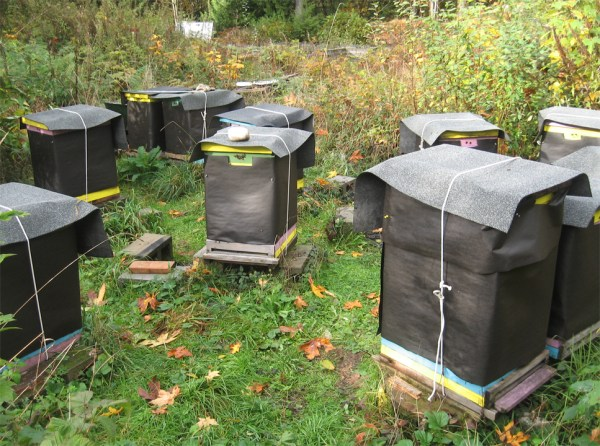 Preparing Bees for Winter at Brookfield Farm Part Two
