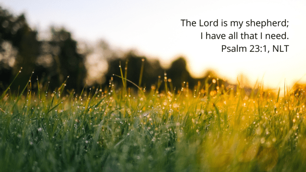 grass covered with dew at sunrise with quotation of Psalm 23:1, NLT