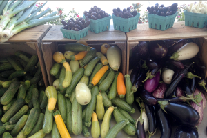 Thursday's Farmers Market, Rhode Island Row