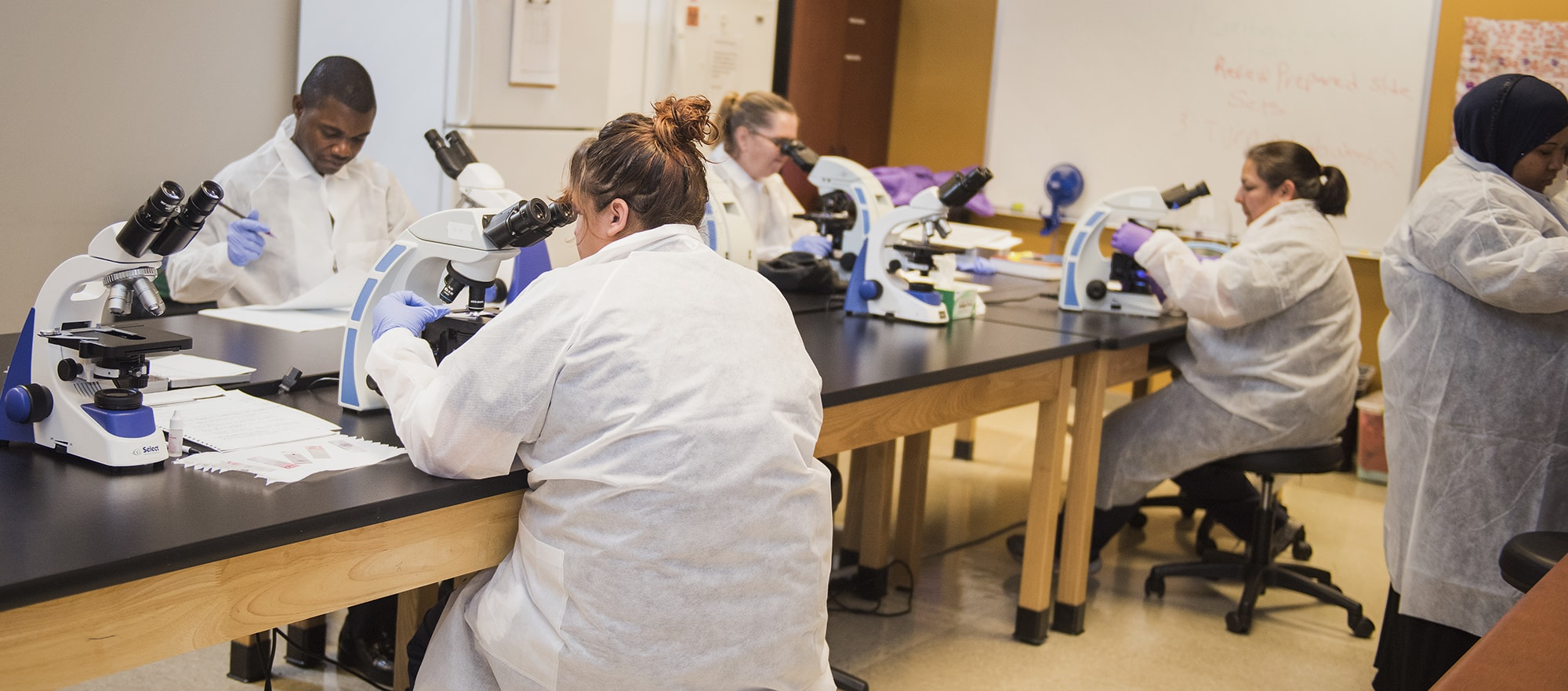 Medical Laboratory Technician  Associate of Science