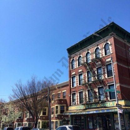 Our Lady of Loreto, April 2016 - Brooklyn Archive