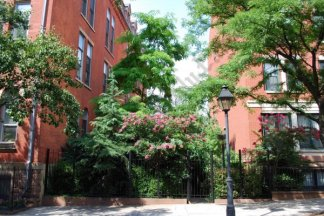 Brooklyn Heights Open Spaces, July 2013