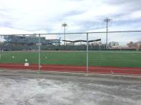 Looking from the Backyard to the field