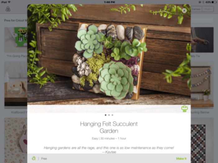 Hanging Felt Succulent Garden - Brooklyn Berry Designs