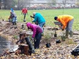 Planters in the rain.