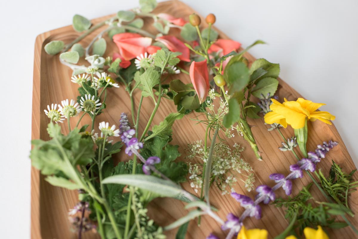 flowerherb