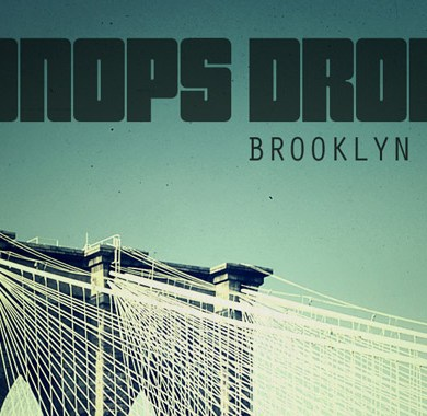 Photo of Oonops Drops – Brooklyn Tree