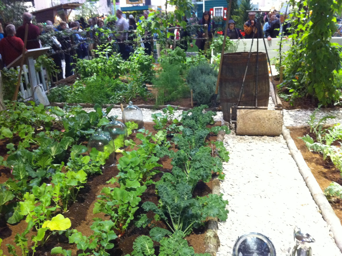 Vegetable Roof Garden Inspiration Interior Designs