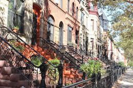 The Neighborhoods - Bed Stuy