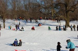 Winter, Prospect Park