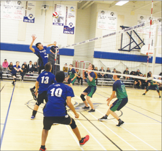 Bassano Broncos give all at zone volleyball tournaments - Brooks Bulletin