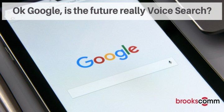 Ok Google, is the future really Voice search-
