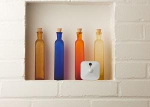 Blink on kitchen shelf