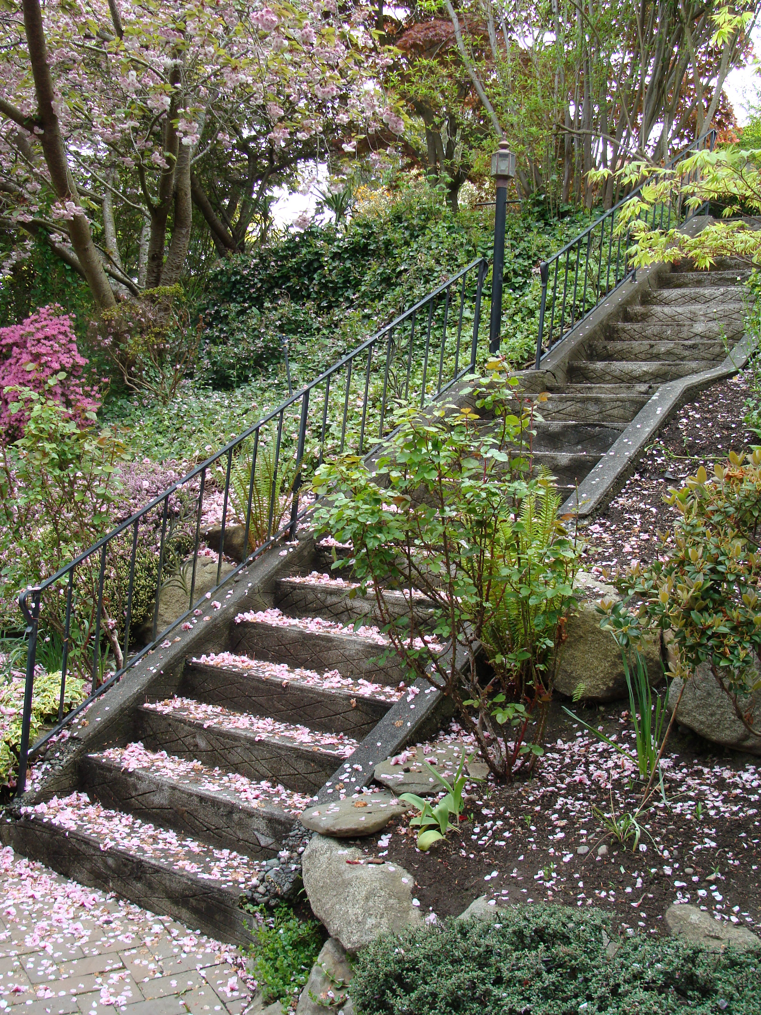 24 Brilliant Landscaping Ideas For Steep Hillside – Thorplc Com