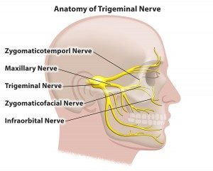 trigeminal nerve diagram concept map skeletal system pain neuralgia treatment in