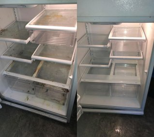 fridge-before-after