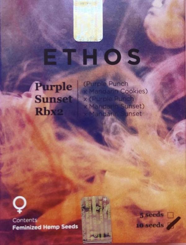 Ethos - Purple Sunset Rbx2