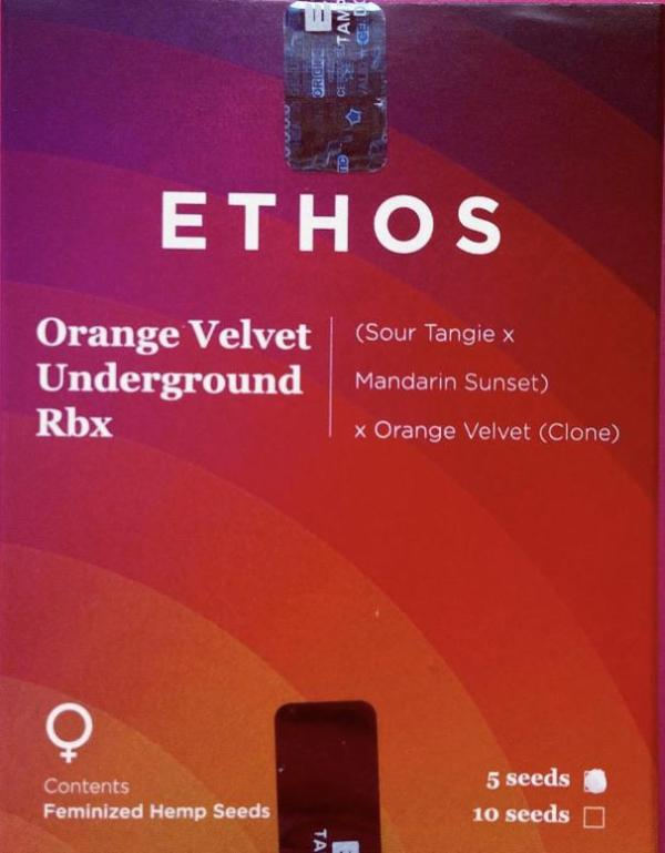 Ethos - Orange Velvet Underground Rbx