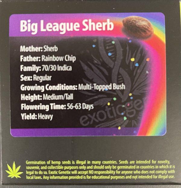 Exotic Genetix - Big League Sherb (Reg M/F)