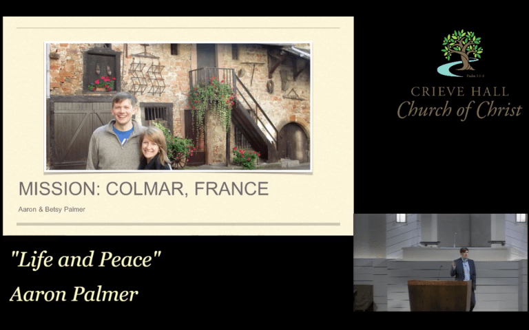 Aaron Palmers aim for Colmar, France
