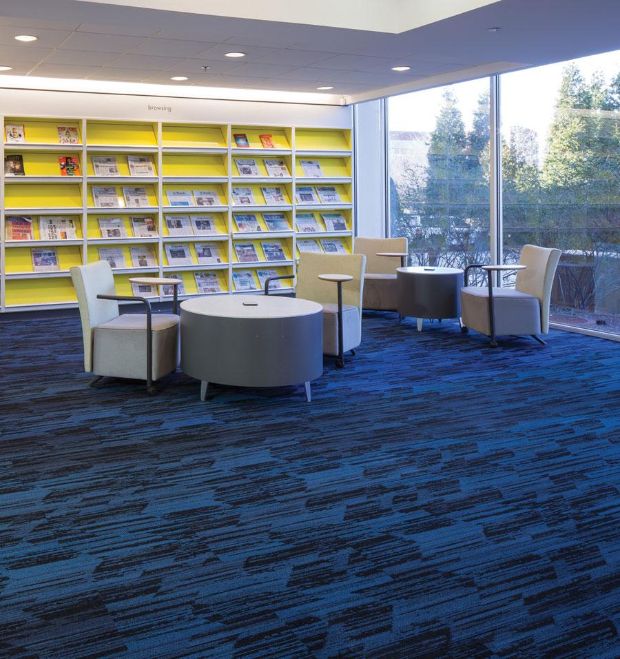 Commercial Carpet Replacement Broward County  Paul Davis
