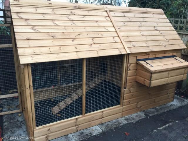 Garden Chickens Project-13
