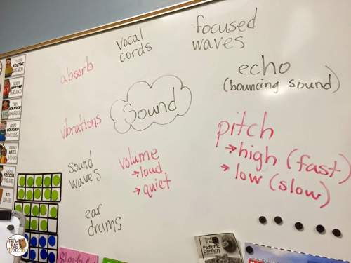 small resolution of Teaching about Sound: 1st Grade Science - The Brown Bag Teacher